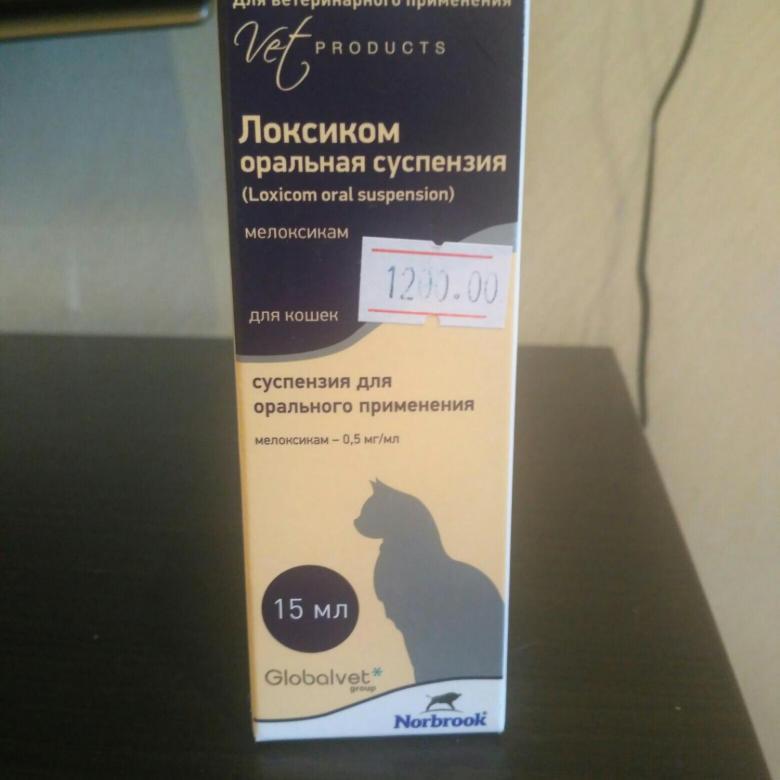 Локсиком для собак: инструкция по применению, назначение и дозировка, противопоказания