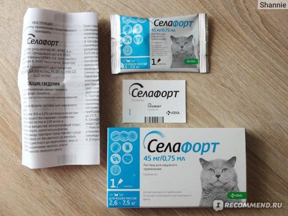 Как правильно травить глистов у собак и кошек? вряд ли вы делали это правильно!
