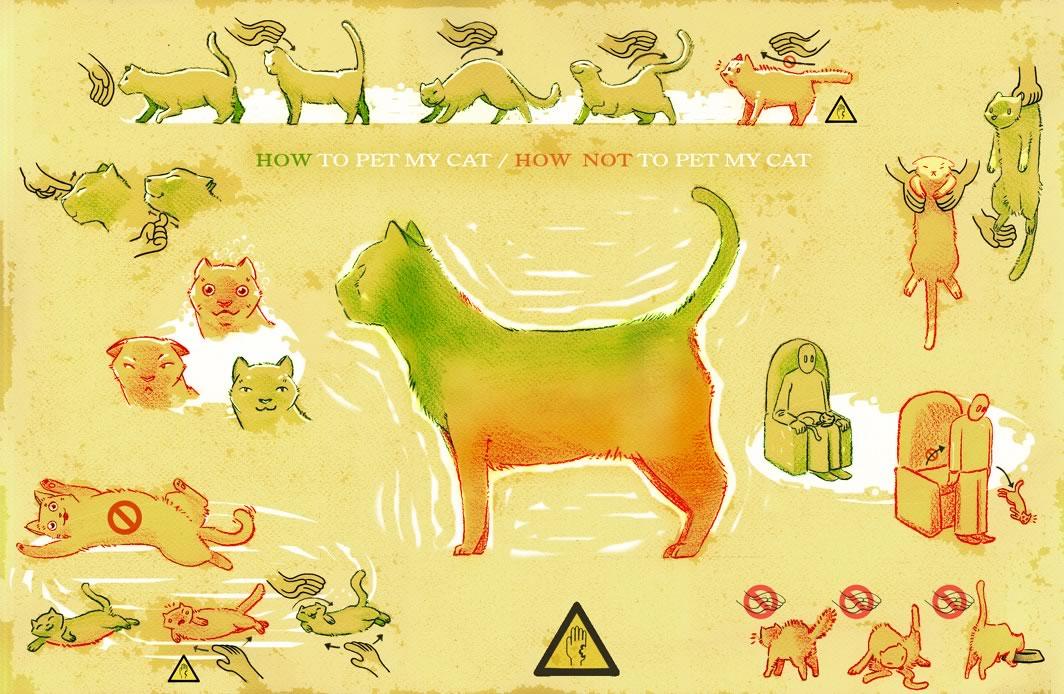 Как правильно гладить кота – приятные и нежелательные зоны для прикосновений