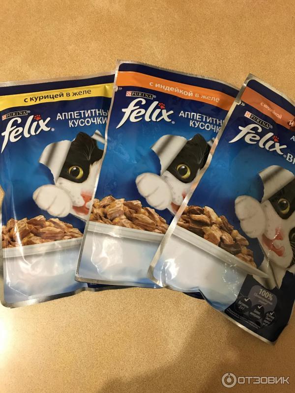 Влажные корма для кошек (35 фото): рейтинг производителей, лучшие жидкие корма по качеству. сколько нужно давать в день? отзывы ветеринаров