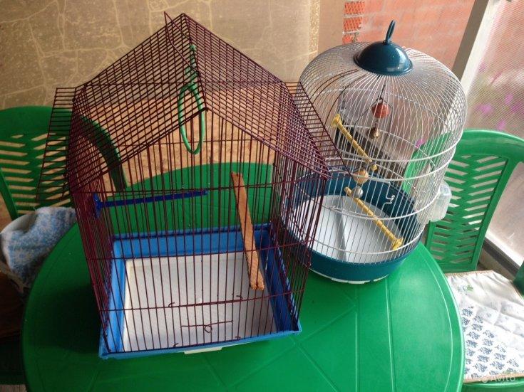 Клетка для попугая своими руками (35 фото): как сделать большую клетку по чертежам? требования к самодельным моделям