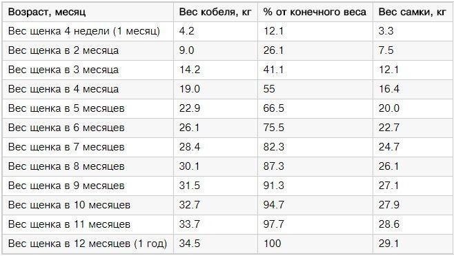 Таблица веса щенка по месяцам