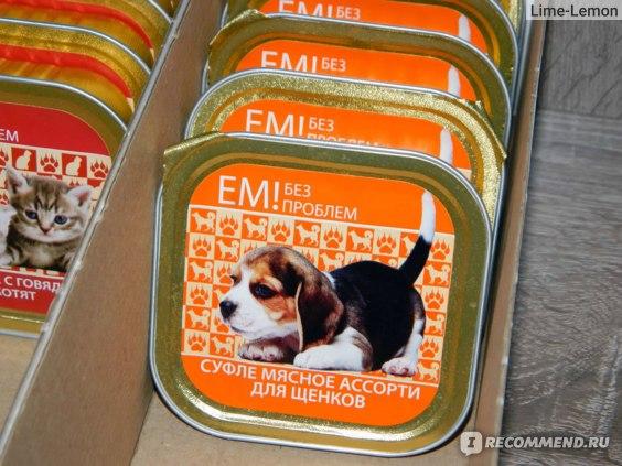 Консервы для собак: виды влажных кормов. составы жидких консервов. рейтинг лучших качественных мокрых кормов для щенков и взрослых собак