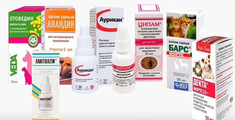 Ушной клещ у кошек описание, симптомы, причины заражения, эффективное лечение