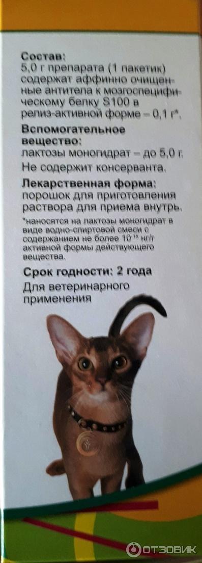Анотен для кошек и собак: отзывы, цена, способ применения, инструкция