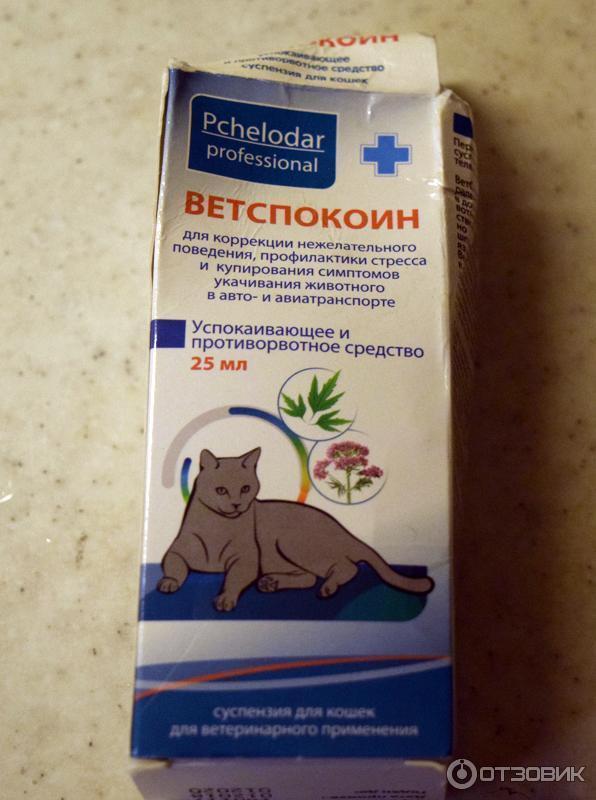 «нет» кошачьему стрессу — ветеринарные успокоительные средства