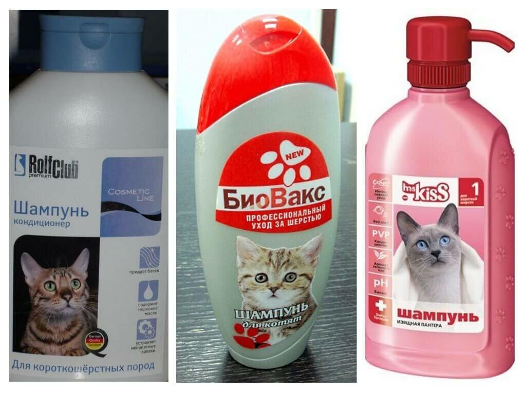 Как выбрать шампунь против блох для кошек и котят. обзор наиболее популярных шампуней от блох для кошек
