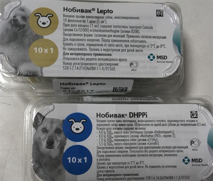 Краткий обзор вакцинации против новой коронавирусной инфекции covid-19