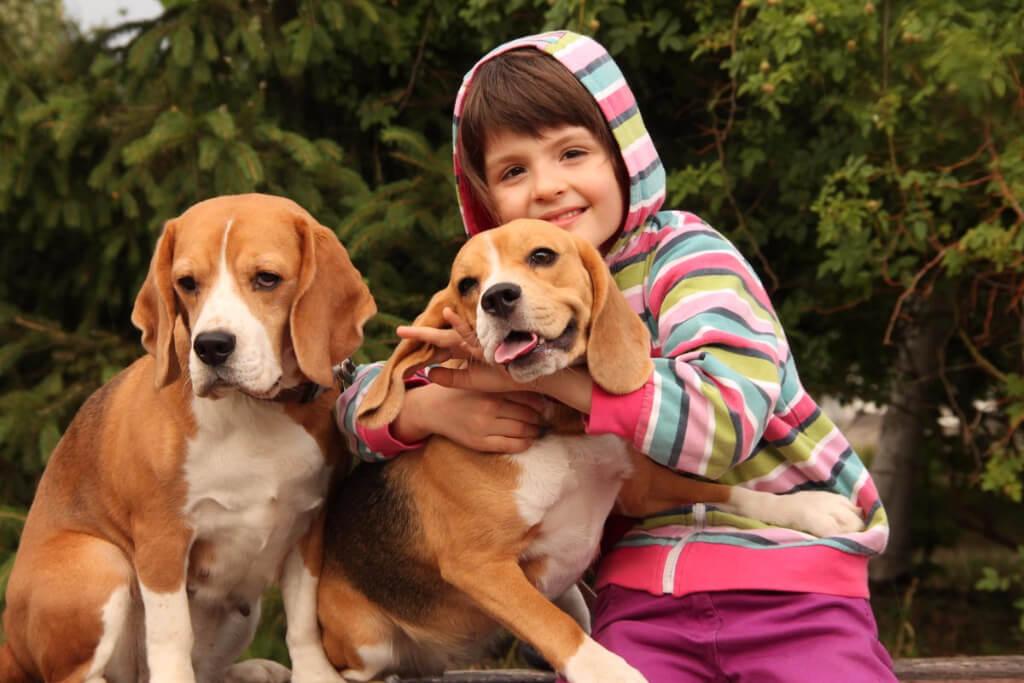 Маленькая порода собак для детей: какую выбрать, плюсы и минусы