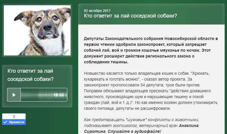 Куда обращаться, жаловаться, если вам мешает соседская собака, если она лает и воет: что делать по закону
