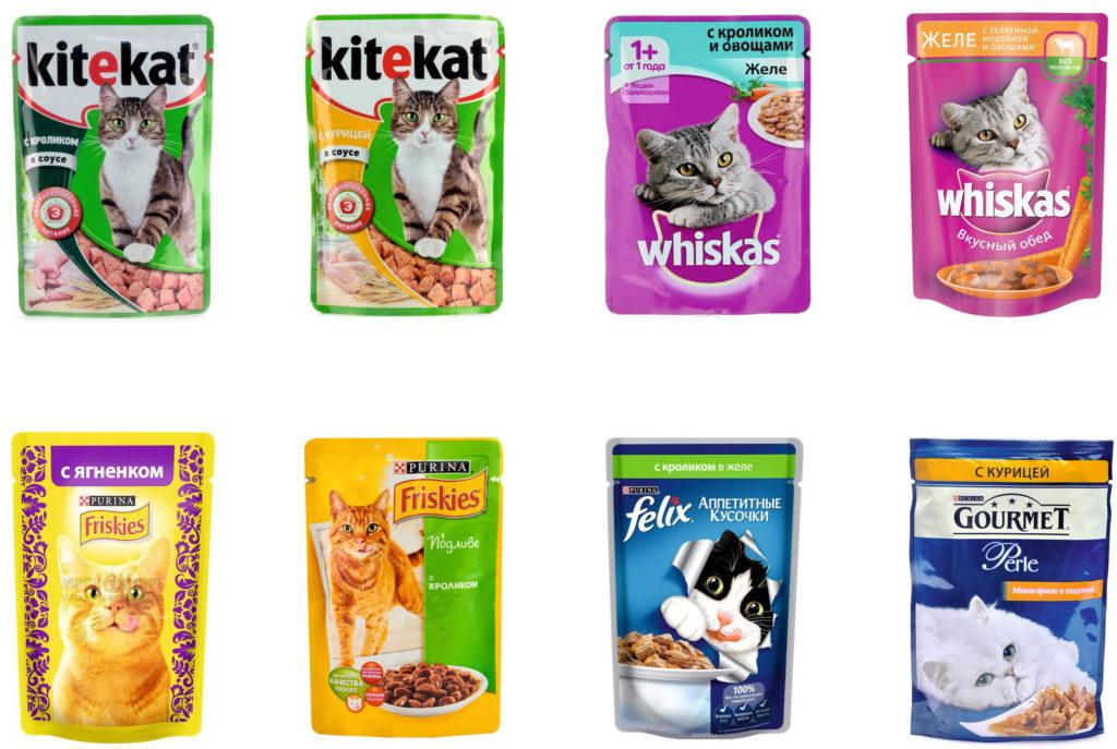 Влажные корма для кошек премиум-класса: рейтинг лучших жидких кормов для котят, хорошие мягкие кошачьих корма