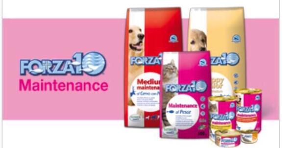 Корм для кошек forza10: отзывы, разбор состава, цена