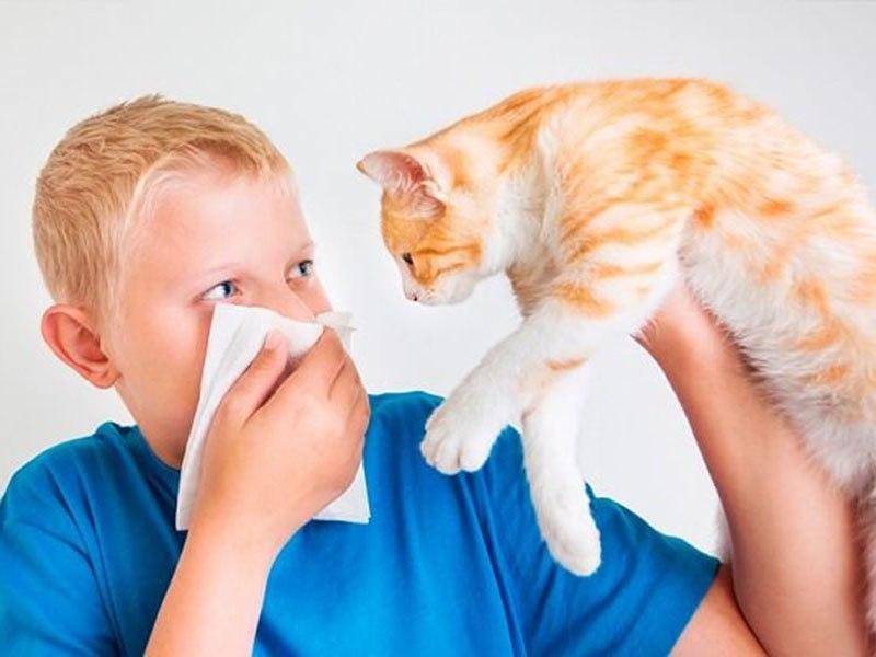 Пищевая аллергия - лечение у взрослых и детей
