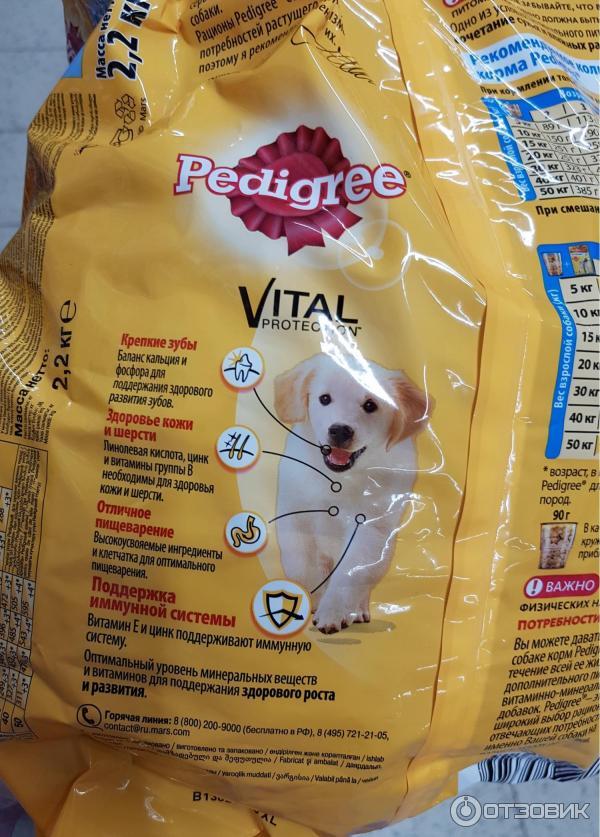 All dogs корм для собак: состав, отзывы ветеринаров и собаководов