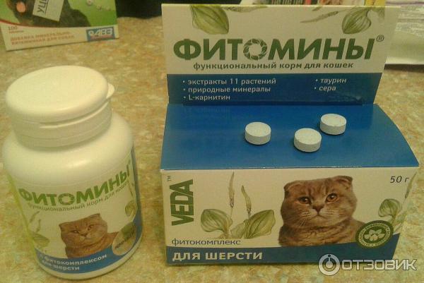 Биоритм – профессиональный подход к витаминной профилактике