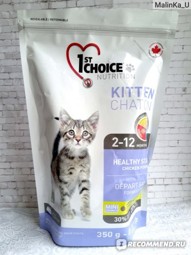 Какой корм для кошки лучше: топ рейтинг 2021 года по качеству состава + отзывы ветеринаров