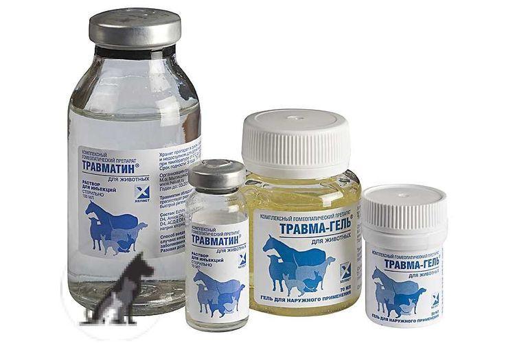 Травматин для собак и кошек: инструкция по применению