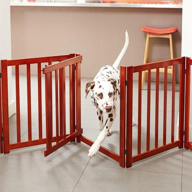 Вольер для собаки в квартире: изготовление домашнего вольера
