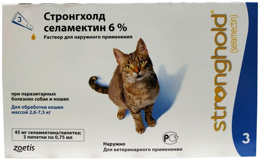Квантум для кошек и котов: инструкция по применению, лечебный и профилактический эффект