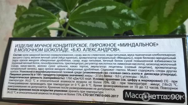 Корм для кошек alleva holistic: отзывы и разбор состава - kotiko.ru