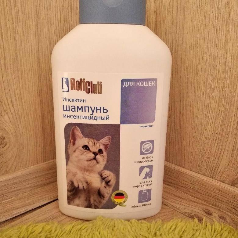 Шампунь для кошек: от блох, от перхоти, от лишая, противогрибковый, от аллергии и обычный, от колтунов, а также цена на них
