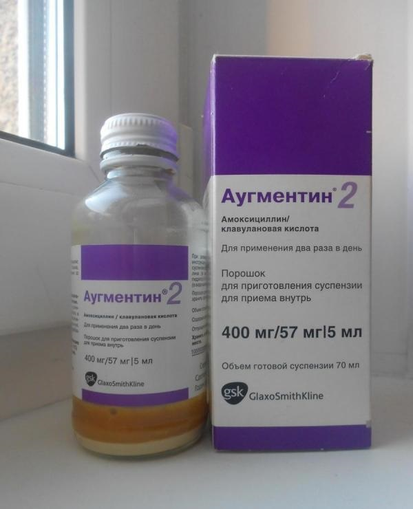 Резистентность к антимикробным препаратам: собаки, кошки и кишечная палочка