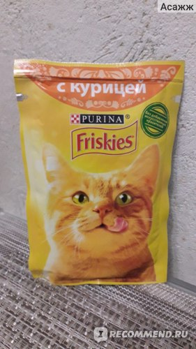 Корм «фрискис» для кошек: отзывы ветеринаров и владельцев животных о нем, обзор состава «фрискас» от «пурина», сравнение с «вискас»