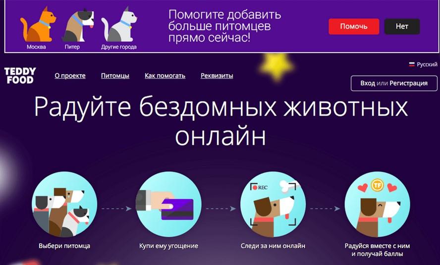 Teddy food: кормите питомца из приюта онлайн и получайте баллы