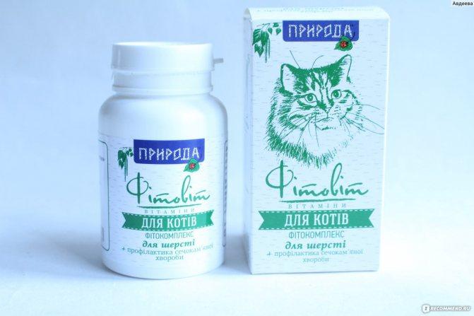 Свойства и особенности применения препарата уро-урси для кошек