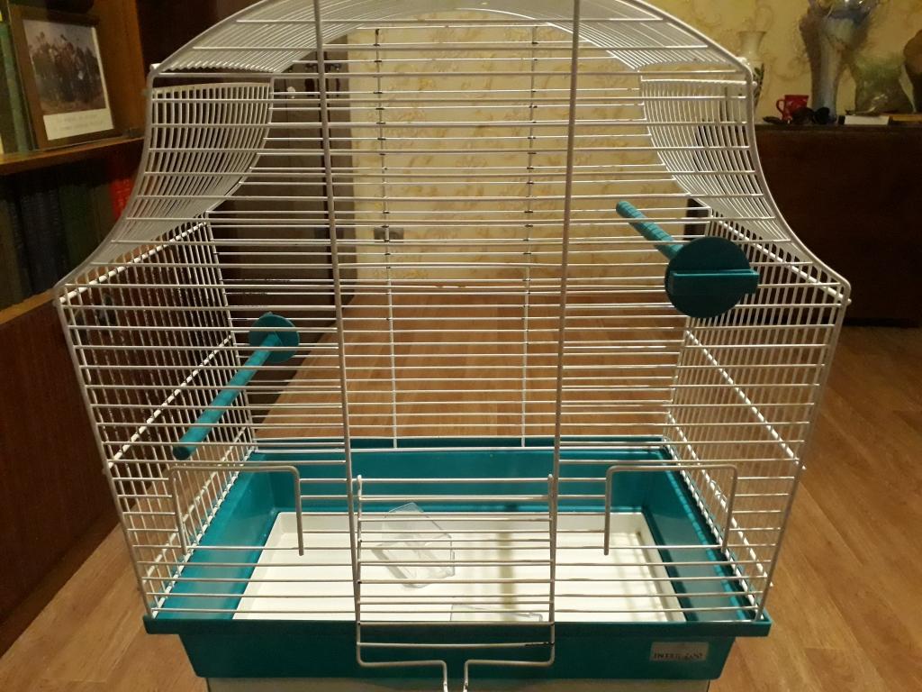 Как обустроить клетку для волнистого попугая: все нюансы