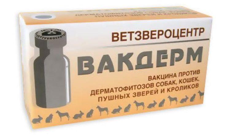 Вакдерм (вакцина) для кошек и собак | отзывы о применении препаратов для животных от ветеринаров и заводчиков