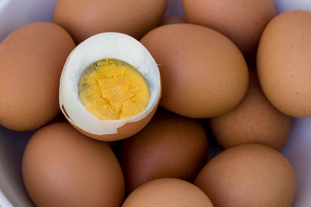 Можно ли собакам яйца. яйца в рационе собак.