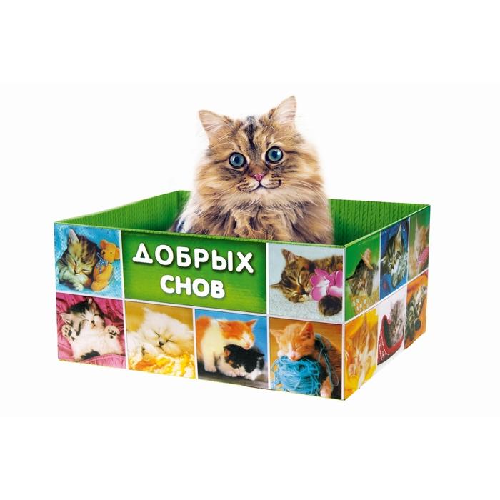 Игрушка для котенка: как сделать своими руками, идеи