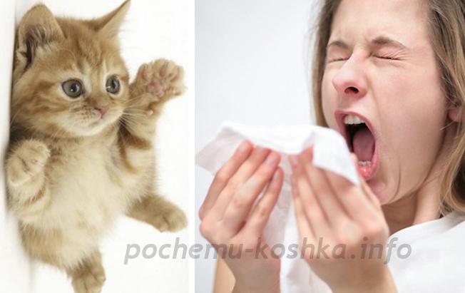 Кожная аллергия