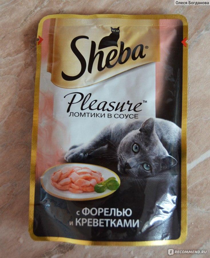 Шеба корм для кошек: отзывы ветеринаров и детальный обзор