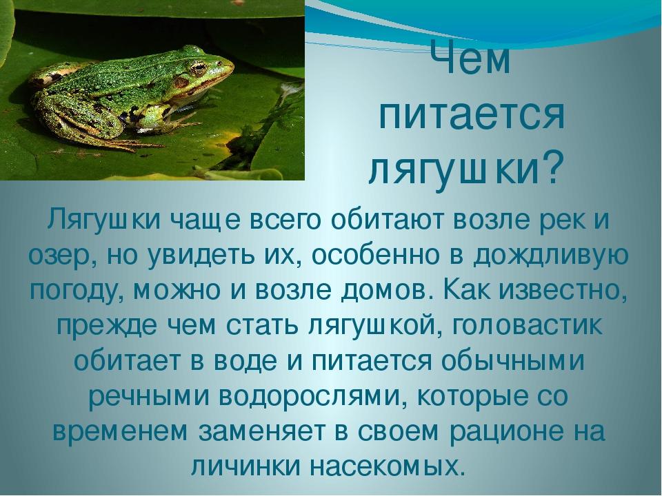 Земляные жабы в огороде вред или польза. как избавиться от земляной жабы