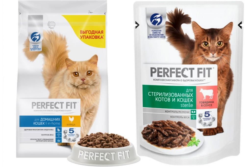 Корм для кошек gourmet — отзывы, разбор состава, цена