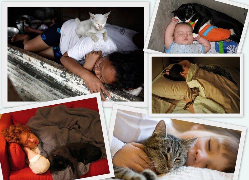 Совместный сон с малышом: плюсы и минусы