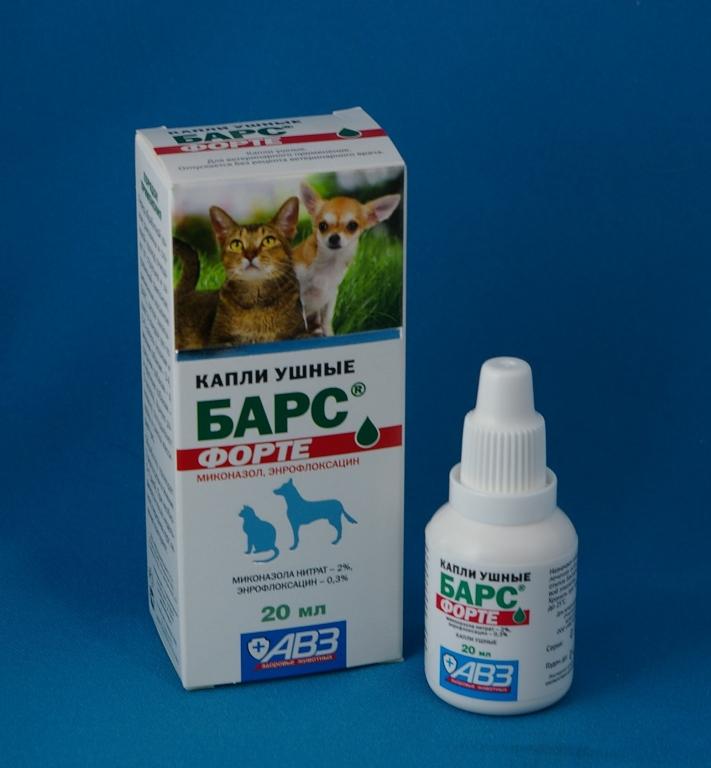 Обзор препаратов от ушного клеща для кошек