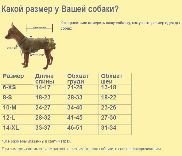 Вес взрослой немецкой овчарки и щенков по месяцам с таблицей
