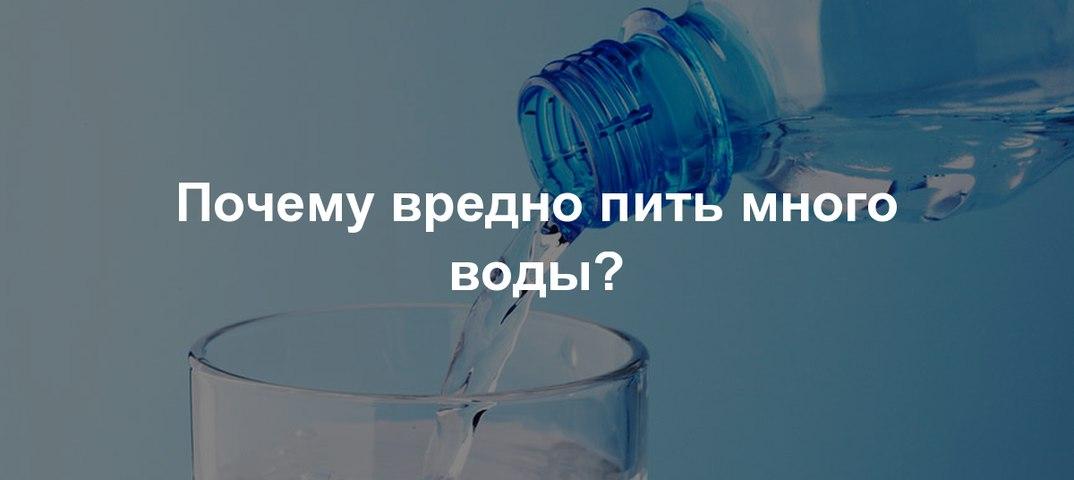 Почему кошки пьют воду из крана и как отучить от такой привычки?