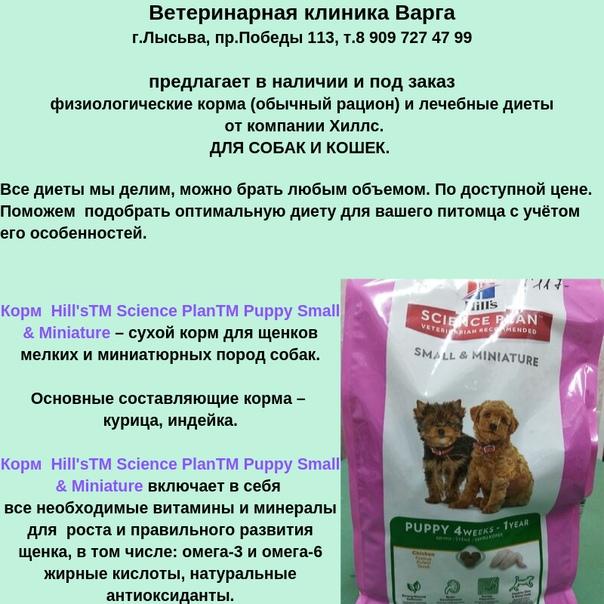 Корм шеба — обзор всей линейки кормов для кошек sheba (описание состава и цены + советы по выбору дозировки кормления)