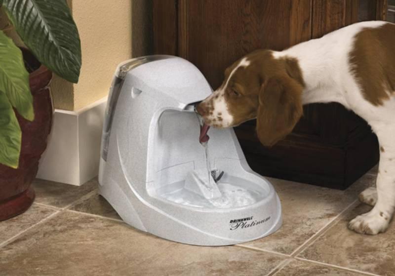 Автоматическая поилка для собак крупных и мелких пород