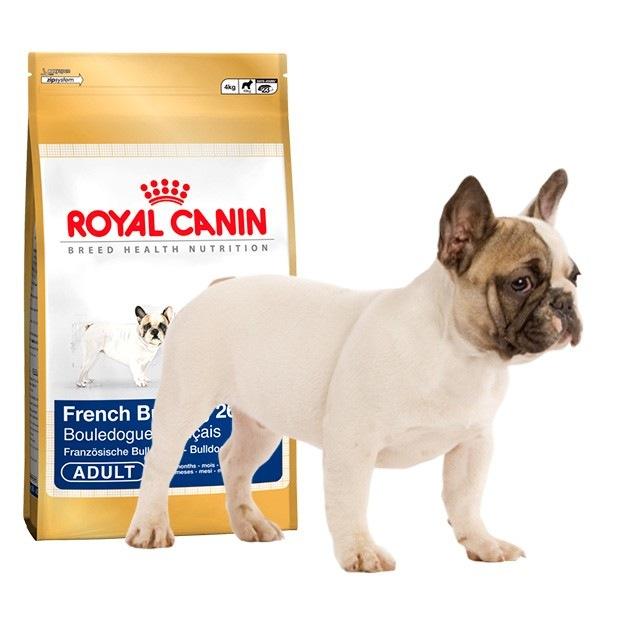 Как и чем кормить щенка французского бульдога: меню, нормы кормления в 1, 2, 3, 4 месяцев, витамины и добавки
