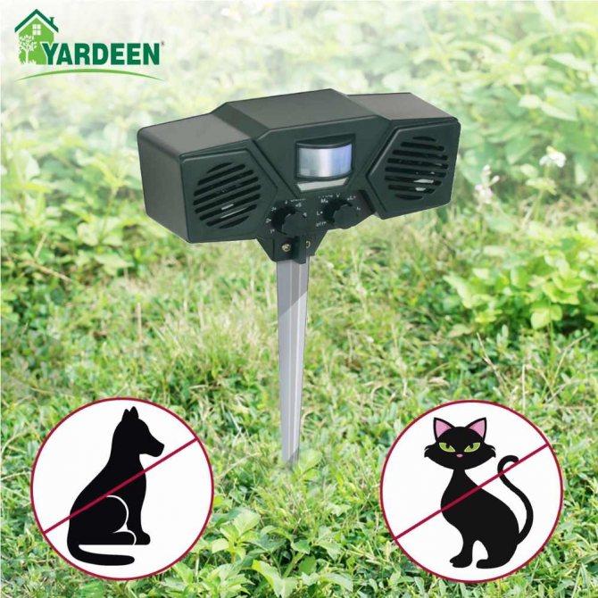 Как отвадить котов от участка? чем навсегда отпугнуть кошек, если они метят территорию? эффективные способы отпугивания соседских котов с дачного участка