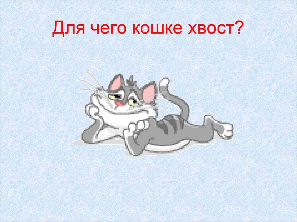 Почему кошка трясет хвостом как будто метит