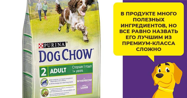 Корм для собак dog chow: отзывы, разбор состава, цена - петобзор