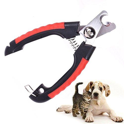 Как стричь ногти собаке: основные рекомендации для проведения процедуры (фото + видео)