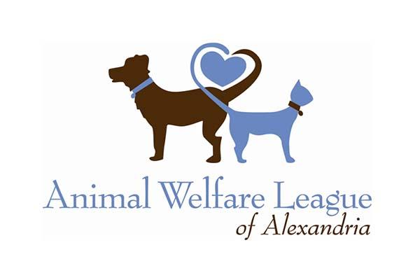 Ceva welfare award   international cat care