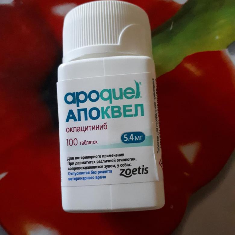 Апоквел для собак 16 мг 20 таблеток купить по выгодной цене на официальном сайте